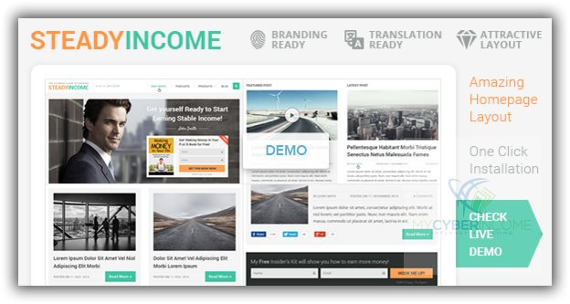 steadyincome wordpress theme review