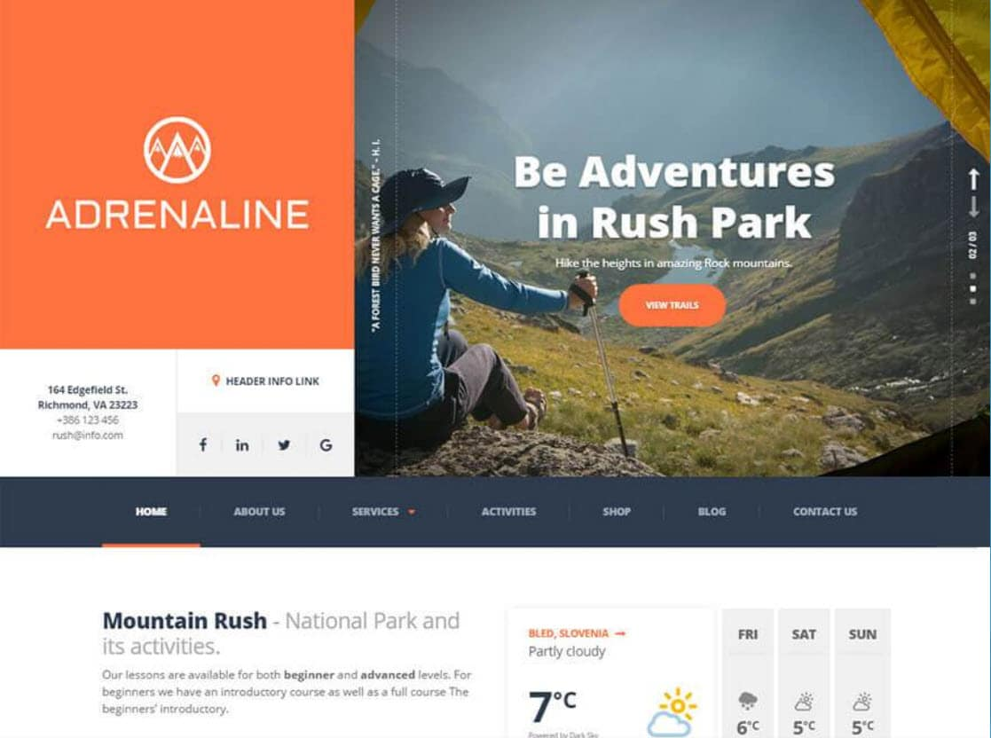 ProteusThemes Review: Discount Coupon & Best Picks 6