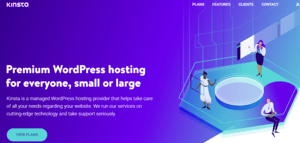 Kinsta Reviews: Honest Opinions After 150+ Days Usage 13